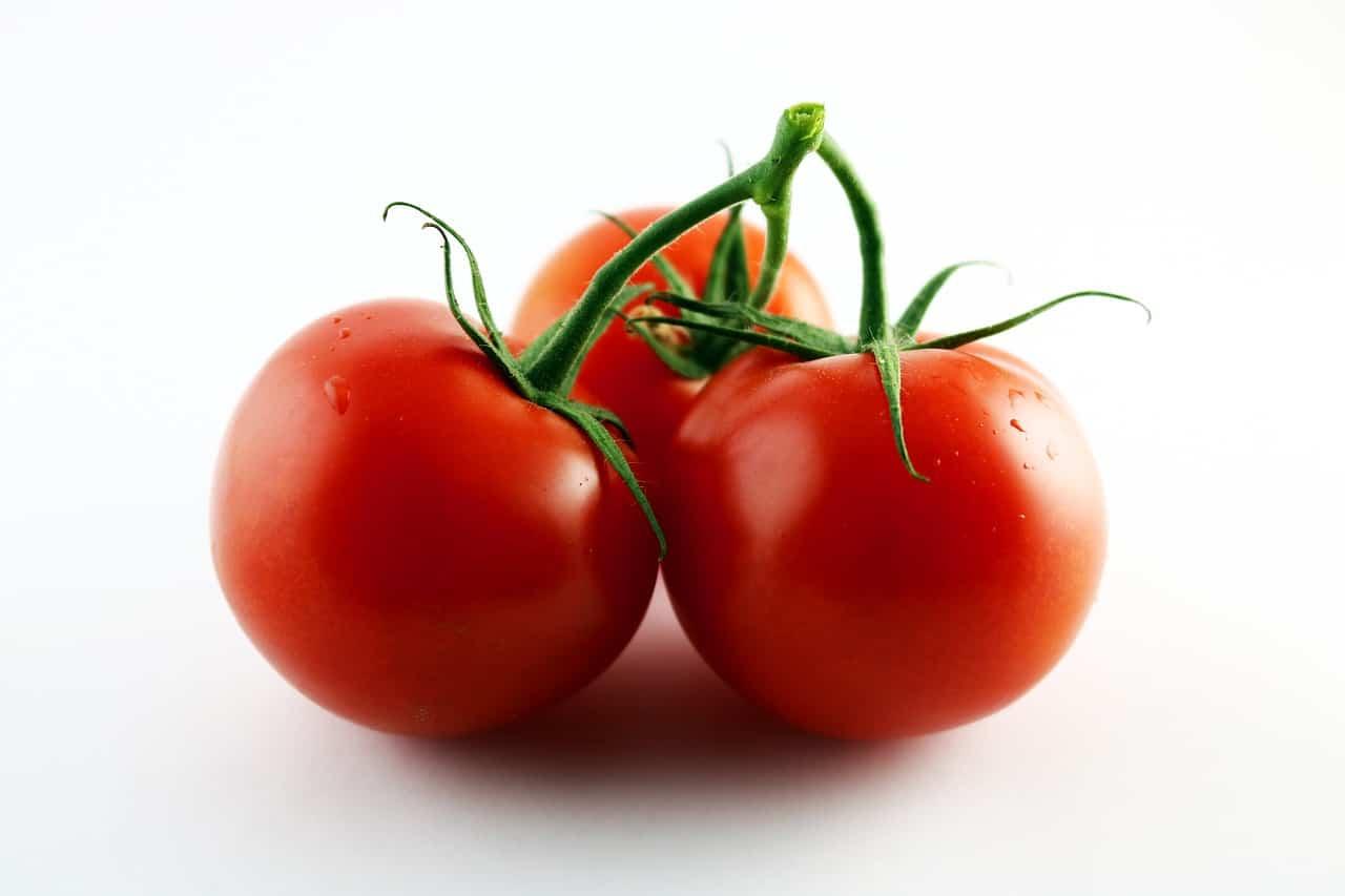 tomato-2823826_1280